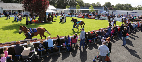 WIN A VIP DAY AT THE NAAS RACECOURSE