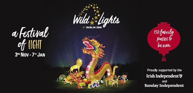 WIN TICKETS TO WILD LIGHTS AT DUBLIN ZOO