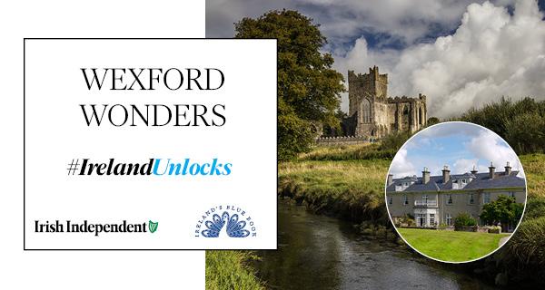 Wexford Women - Wexford Girls - Wexford Ladies (Ireland)